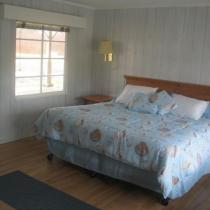 King size bed - pet friendly room